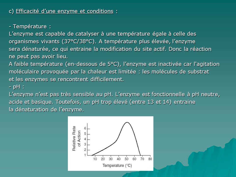 c) Efficacité d'une enzyme et conditions :