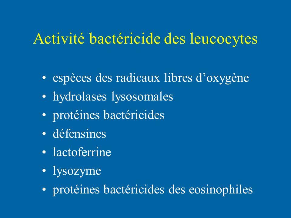 Activité bactéricide des leucocytes