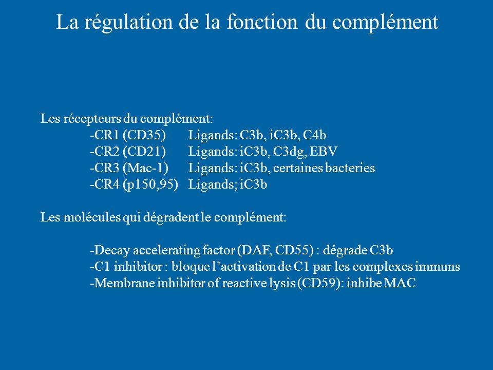 La régulation de la fonction du complément
