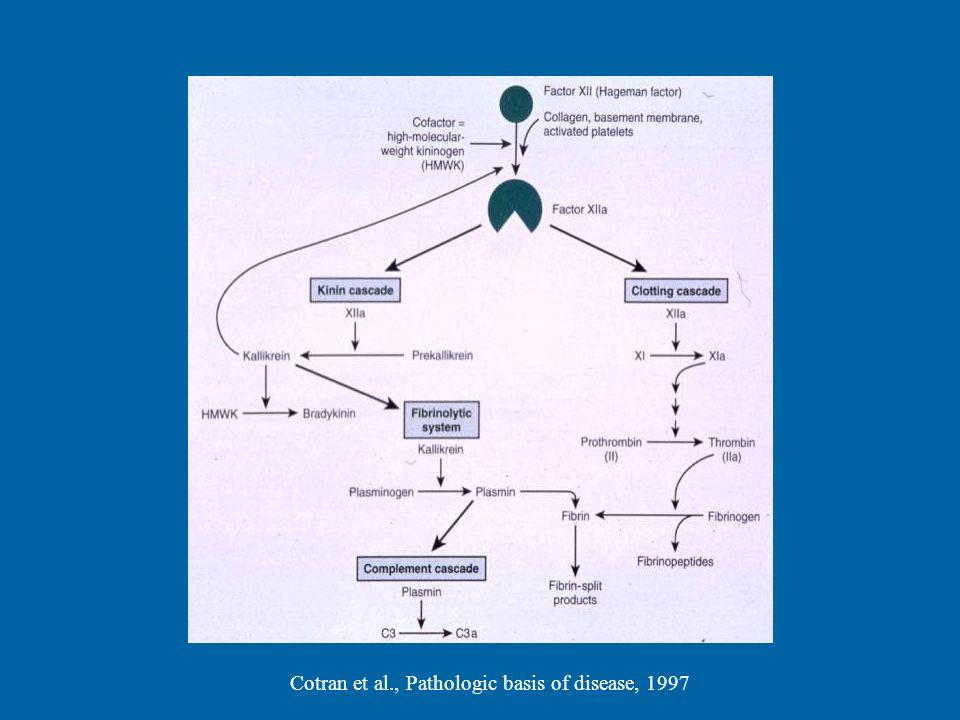 Cotran et al., Pathologic basis of disease, 1997