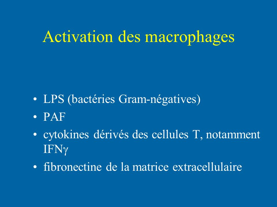 Activation des macrophages
