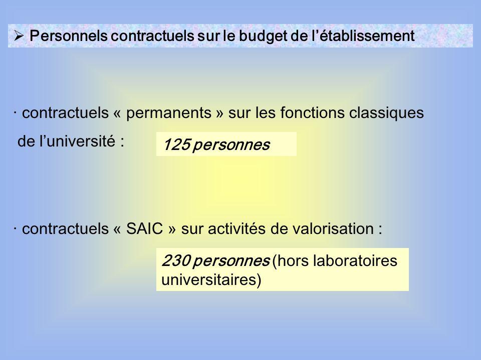· contractuels « permanents » sur les fonctions classiques