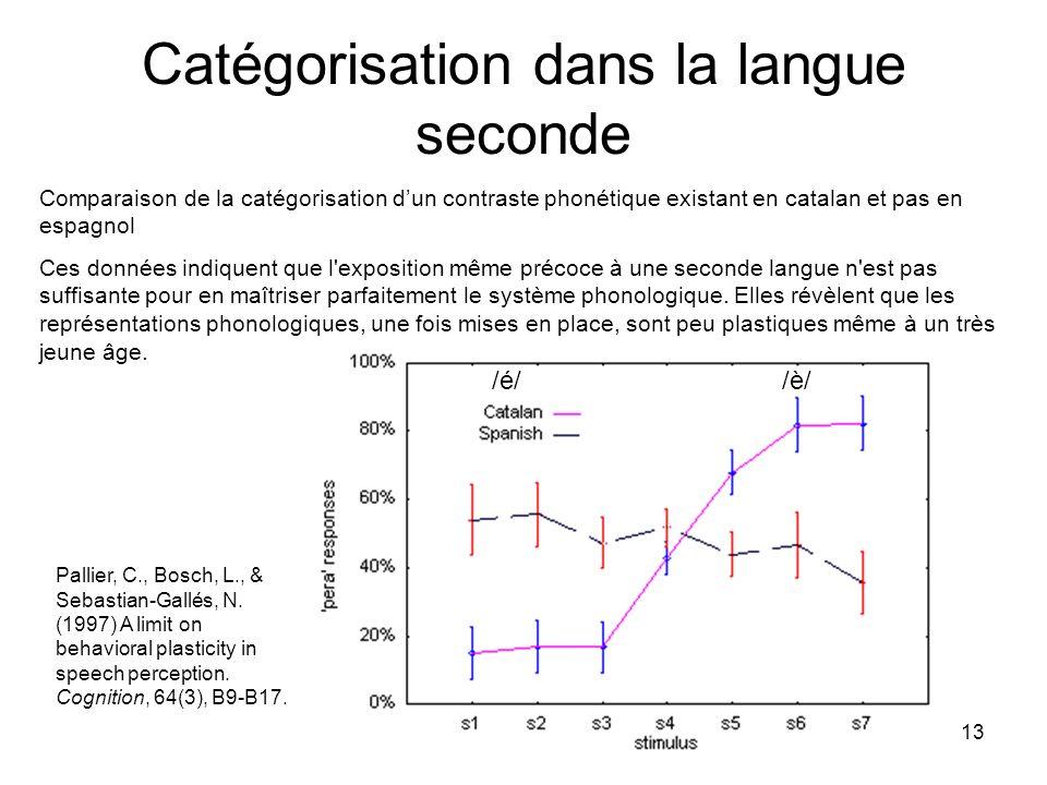 Catégorisation dans la langue seconde