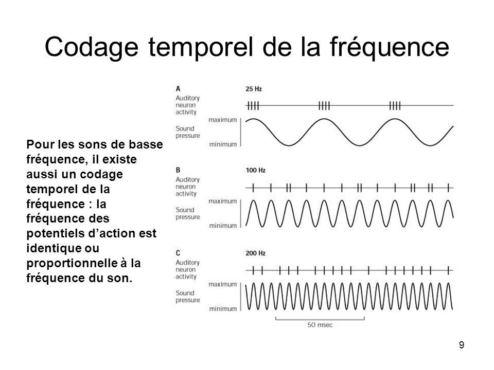 Codage temporel de la fréquence