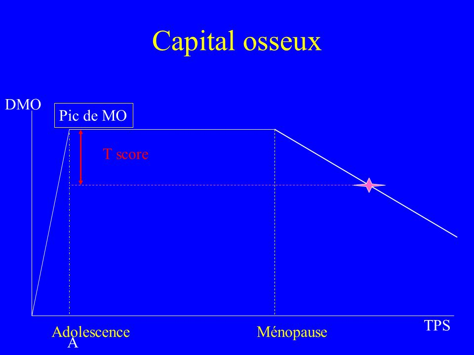 Capital osseux DMO Pic de MO T score TPS Adolescence Ménopause Ado