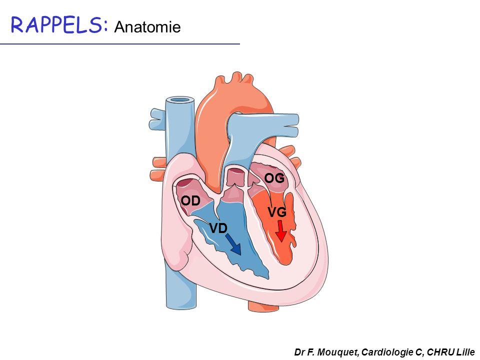 RAPPELS: Anatomie OG OD VG VD Dr F. Mouquet, Cardiologie C, CHRU Lille