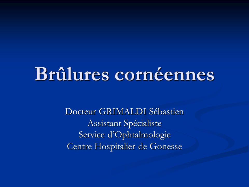 Brûlures cornéennes Docteur GRIMALDI Sébastien Assistant Spécialiste
