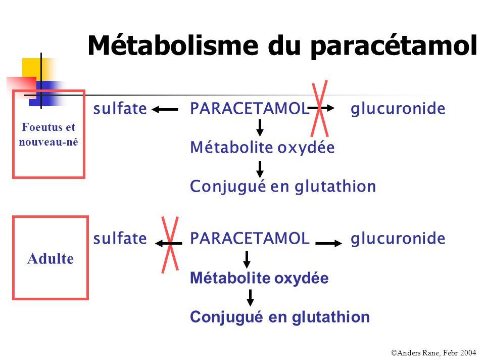 Métabolisme du paracétamol