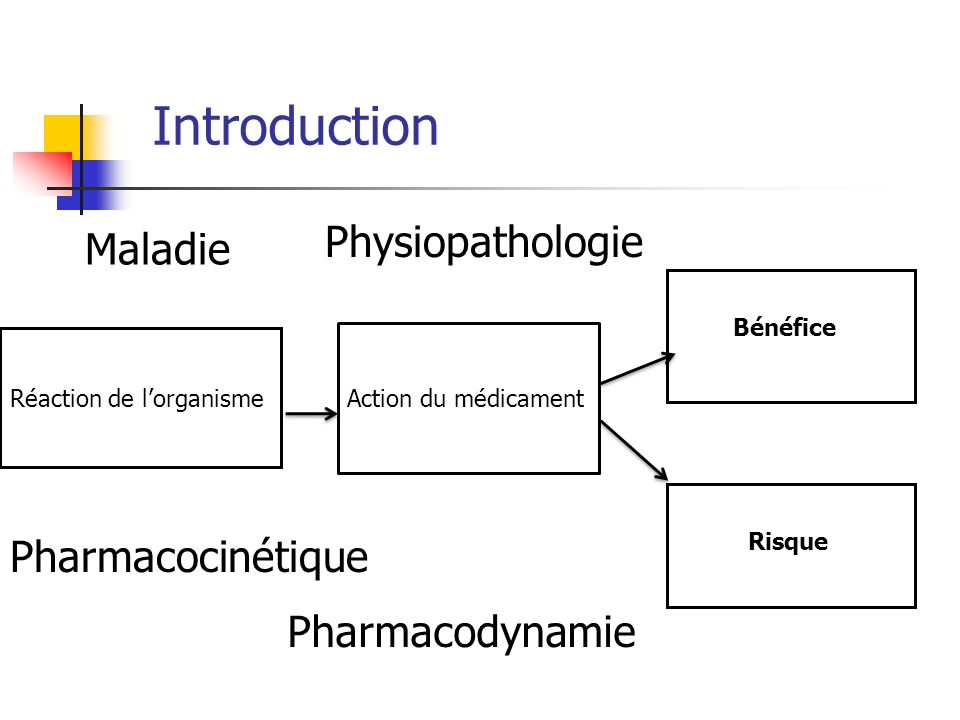 Introduction Physiopathologie Maladie Pharmacocinétique