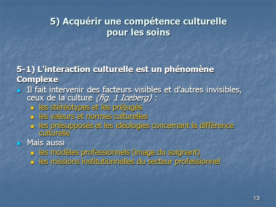 5) Acquérir une compétence culturelle pour les soins