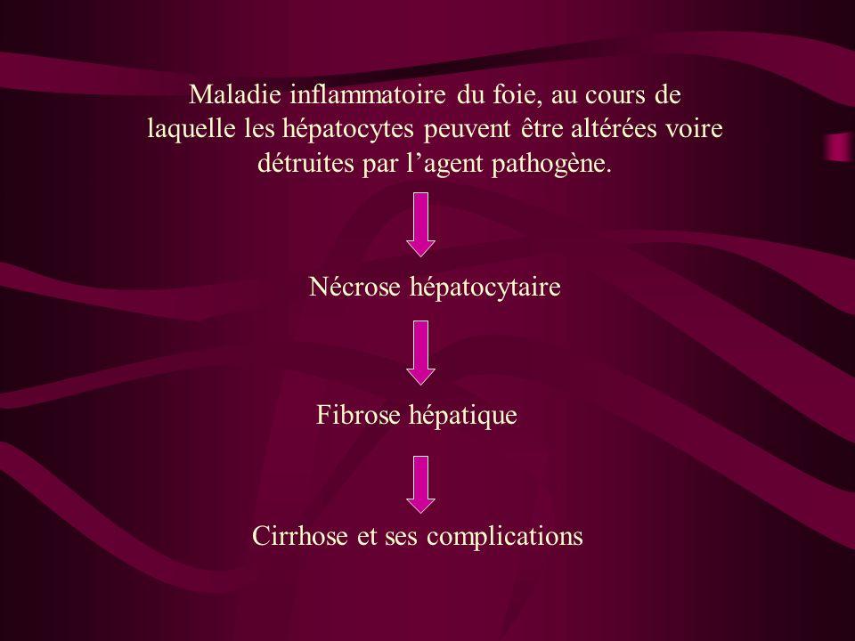 Nécrose hépatocytaire