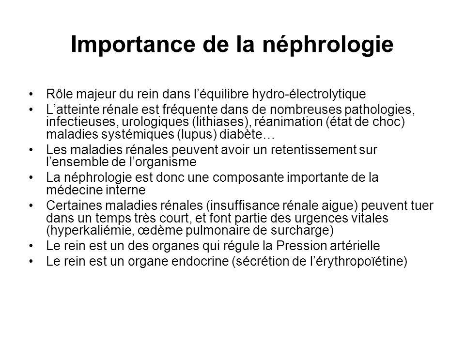 Importance de la néphrologie