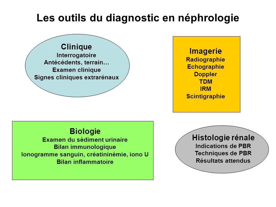 Les outils du diagnostic en néphrologie