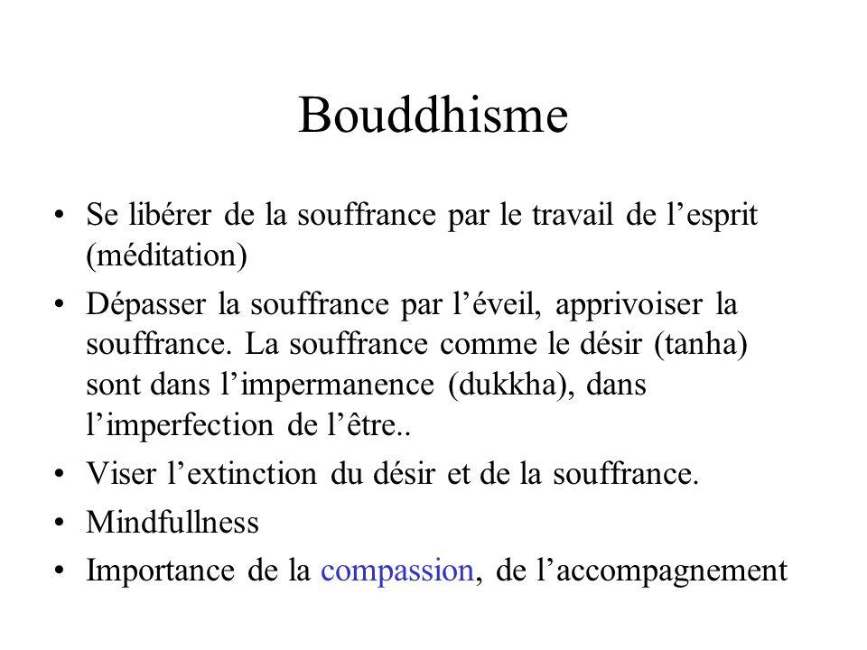 Bouddhisme Se libérer de la souffrance par le travail de l'esprit (méditation)