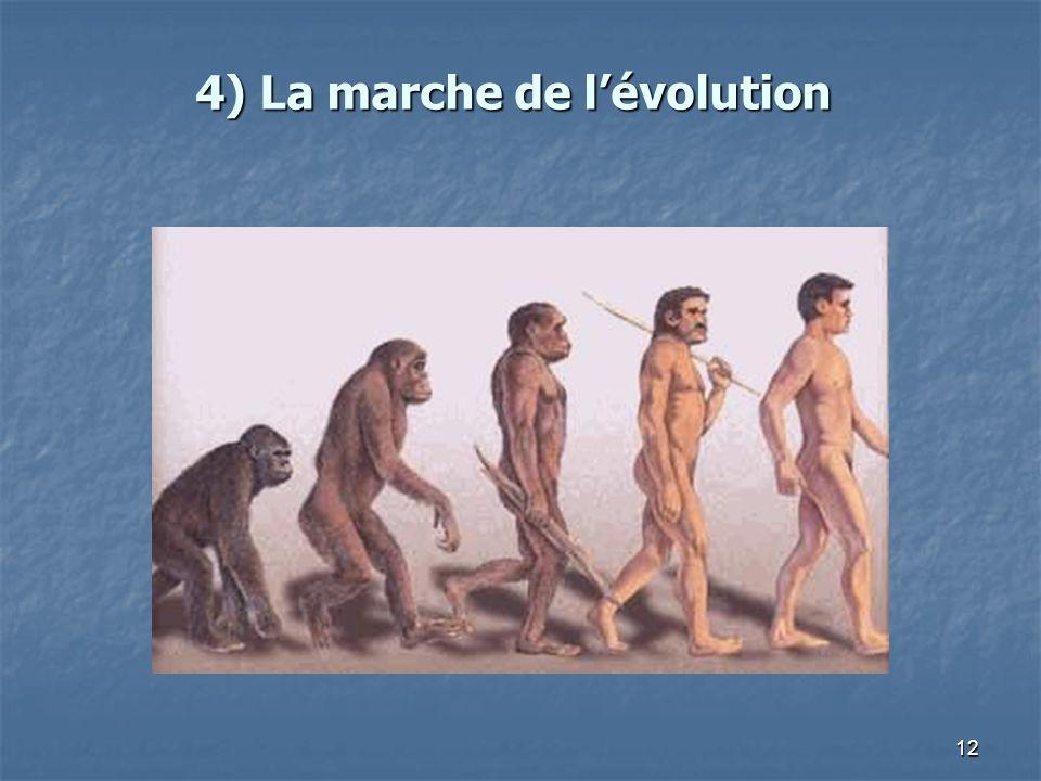 4) La marche de l'évolution