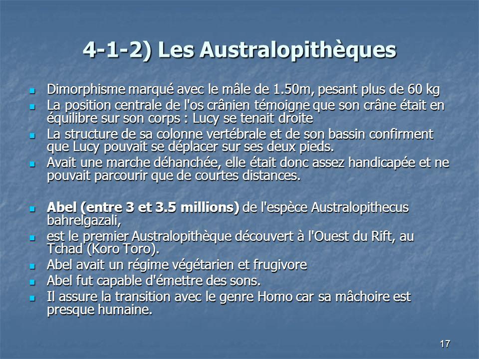 4-1-2) Les Australopithèques