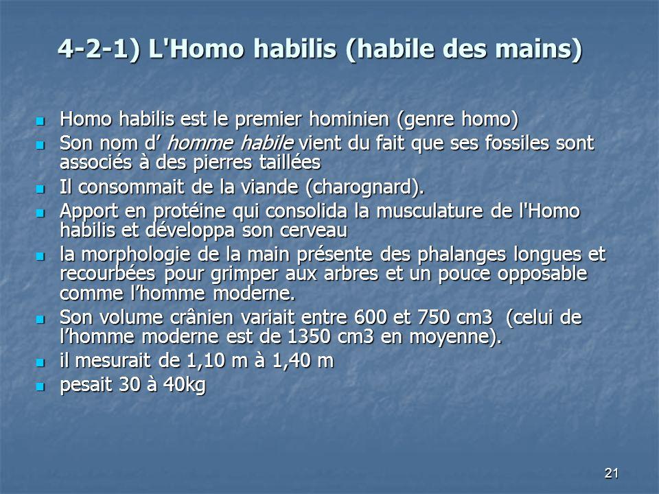 4-2-1) L Homo habilis (habile des mains)