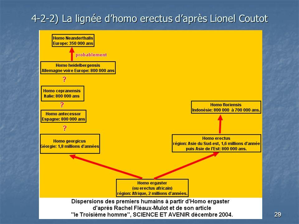 4-2-2) La lignée d'homo erectus d'après Lionel Coutot