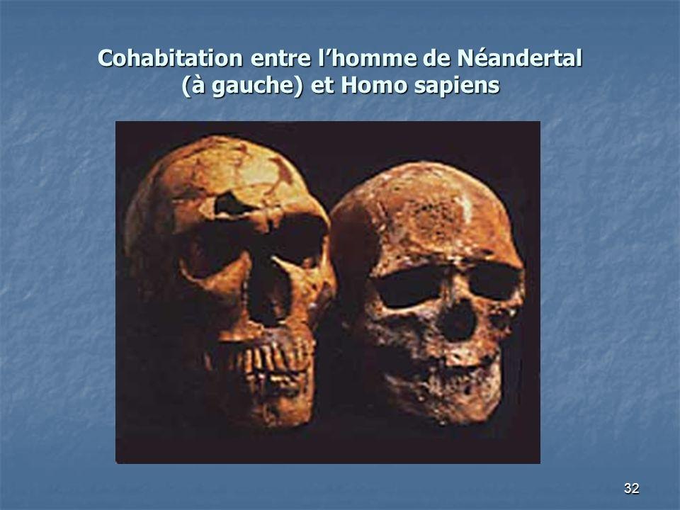 Cohabitation entre l'homme de Néandertal (à gauche) et Homo sapiens