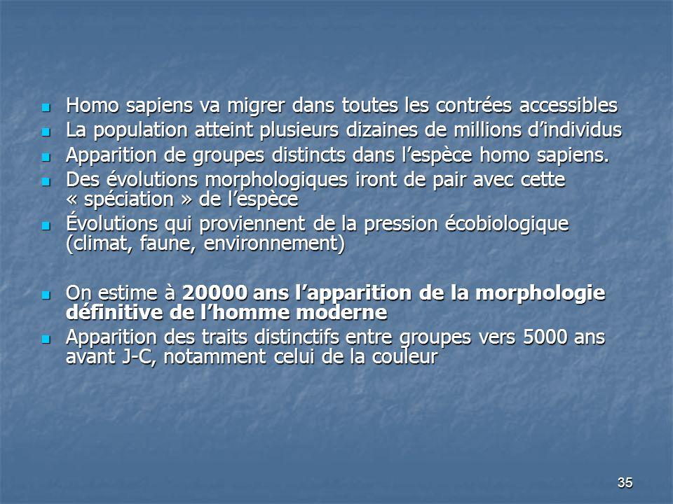 Homo sapiens va migrer dans toutes les contrées accessibles