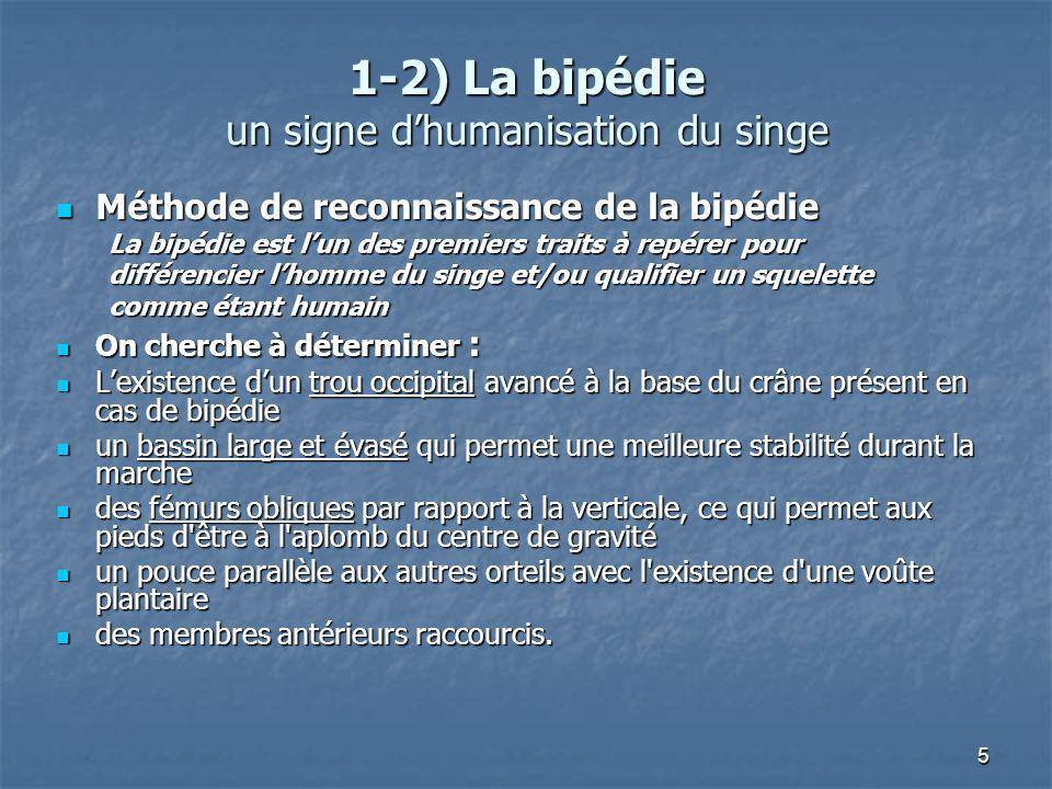 1-2) La bipédie un signe d'humanisation du singe