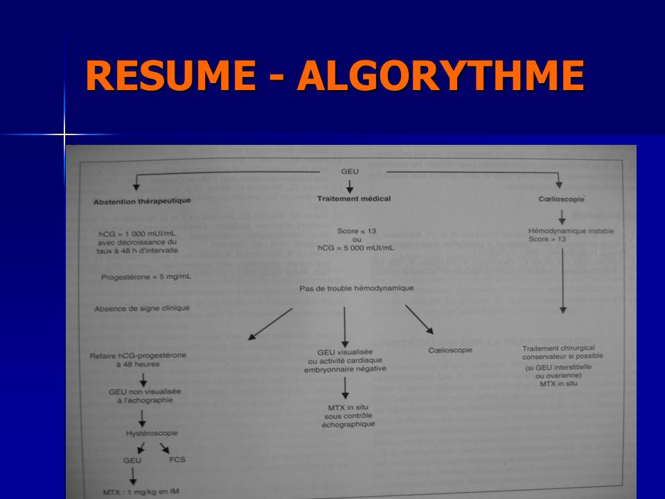 RESUME - ALGORYTHME