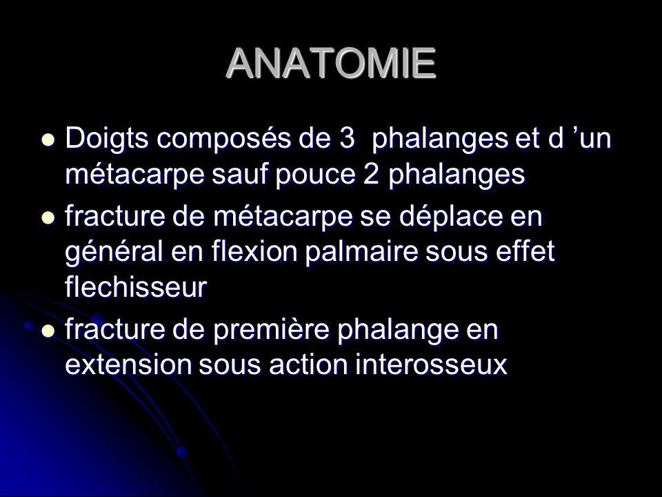ANATOMIE Doigts composés de 3 phalanges et d 'un métacarpe sauf pouce 2 phalanges.