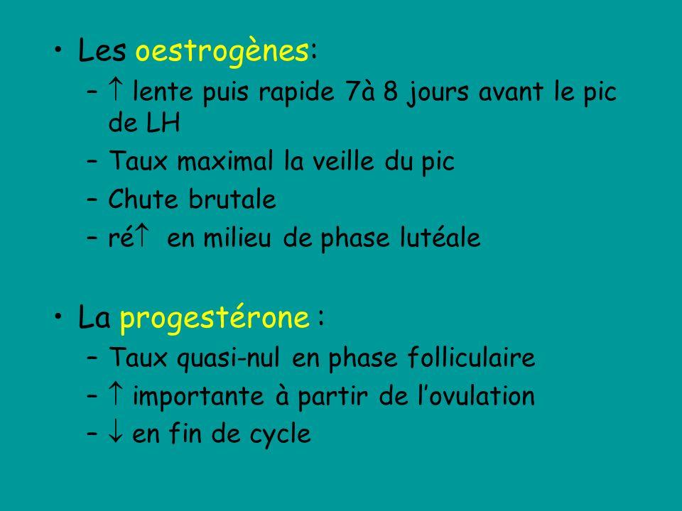 Les oestrogènes: La progestérone :