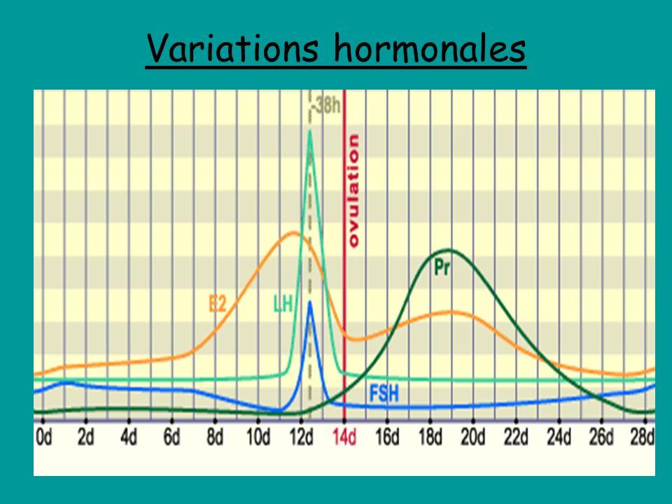 Variations hormonales