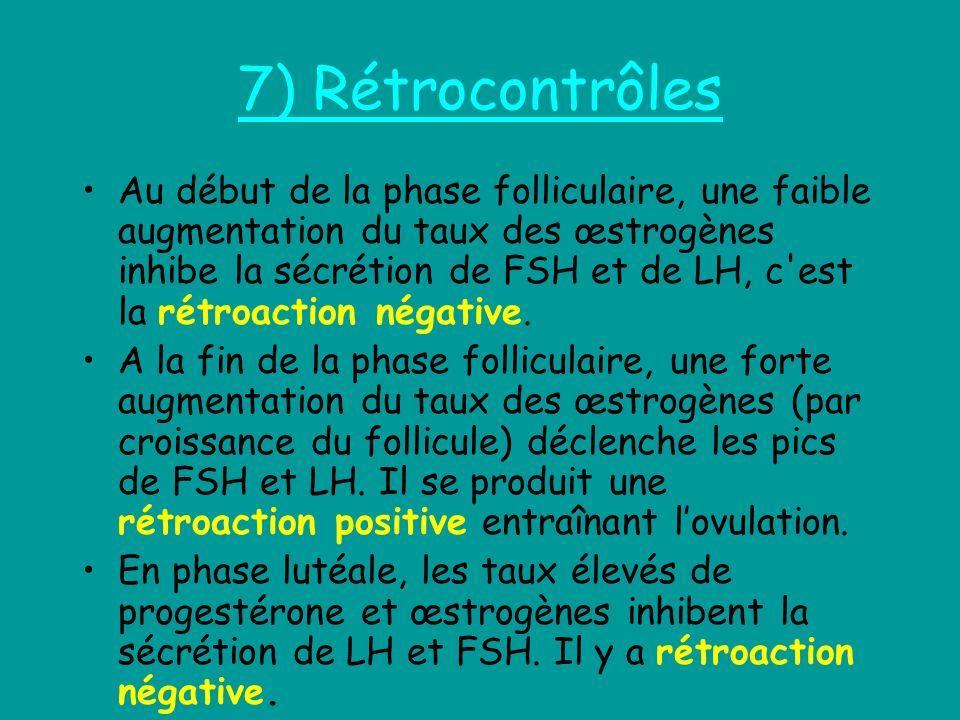 7) Rétrocontrôles