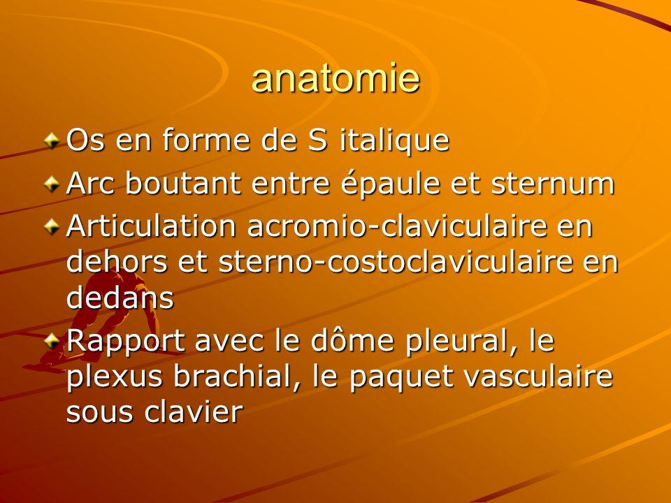 anatomie Os en forme de S italique Arc boutant entre épaule et sternum