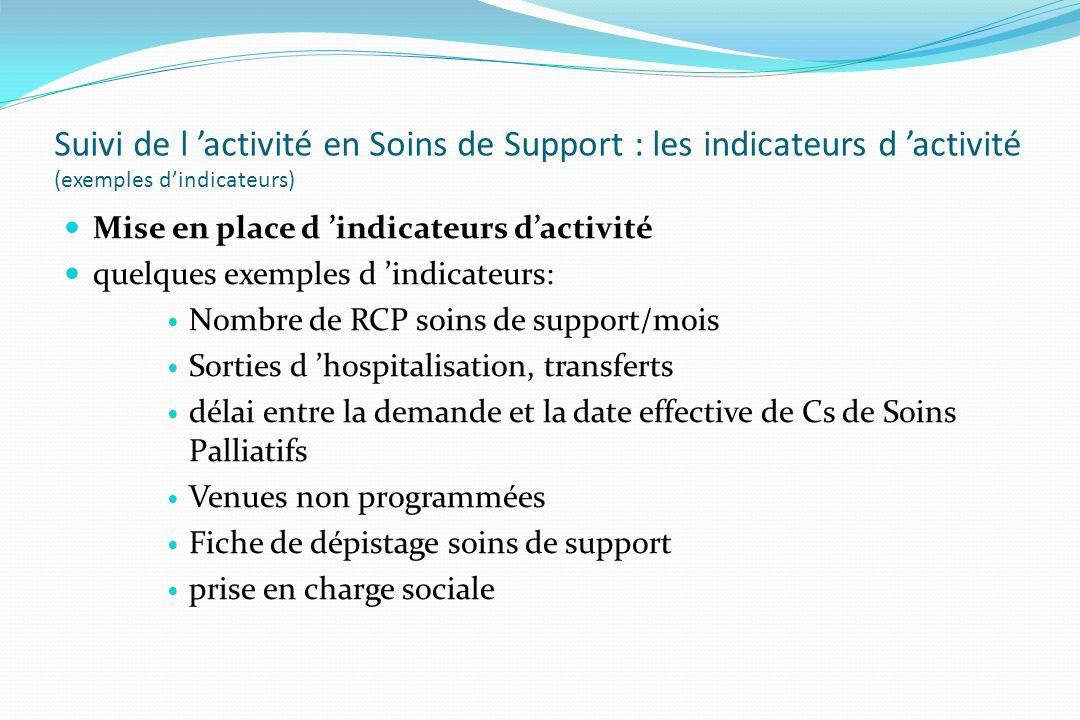 Suivi de l 'activité en Soins de Support : les indicateurs d 'activité (exemples d'indicateurs)