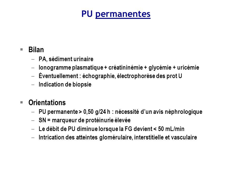 PU permanentes Bilan Orientations PA, sédiment urinaire