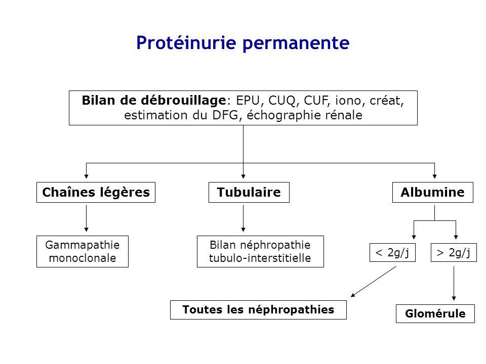 Protéinurie permanente