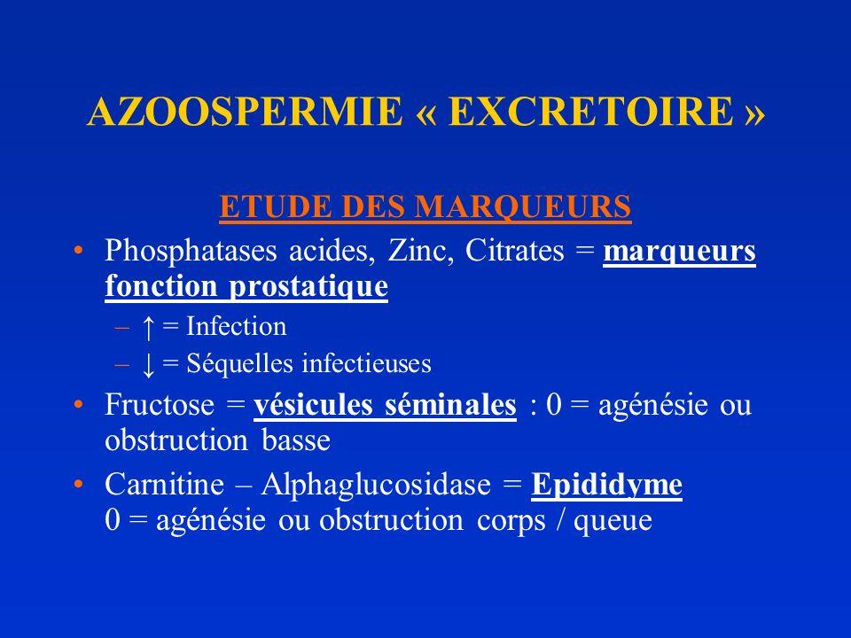 AZOOSPERMIE « EXCRETOIRE »