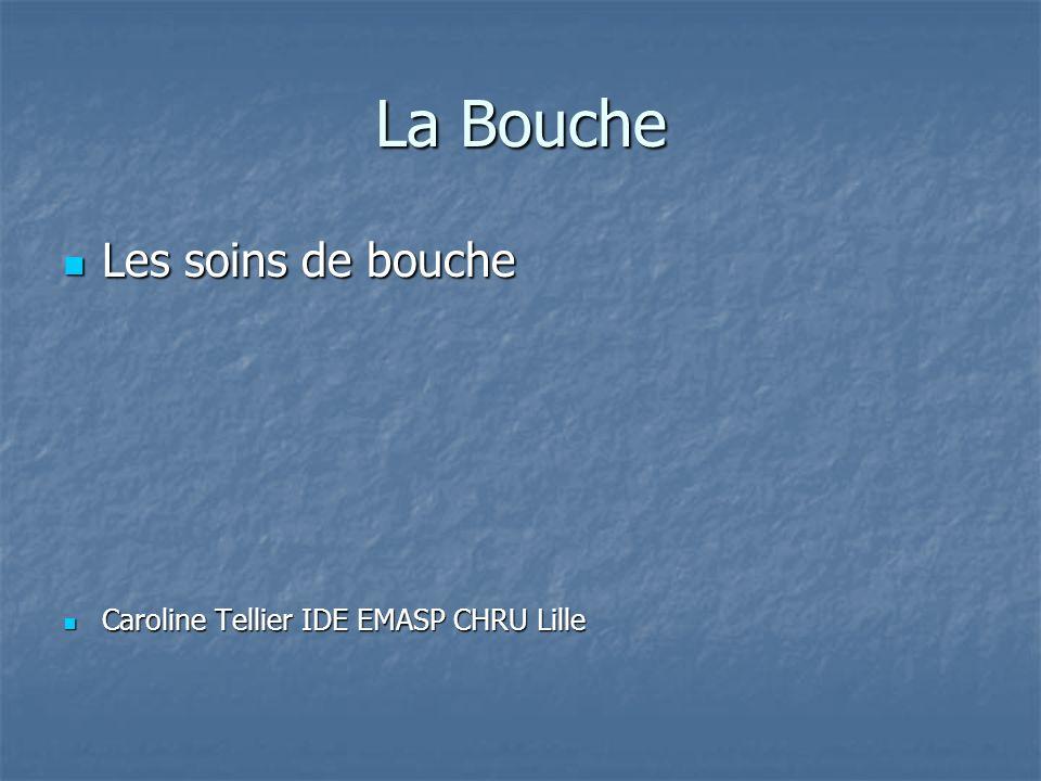 La Bouche Les soins de bouche Caroline Tellier IDE EMASP CHRU Lille