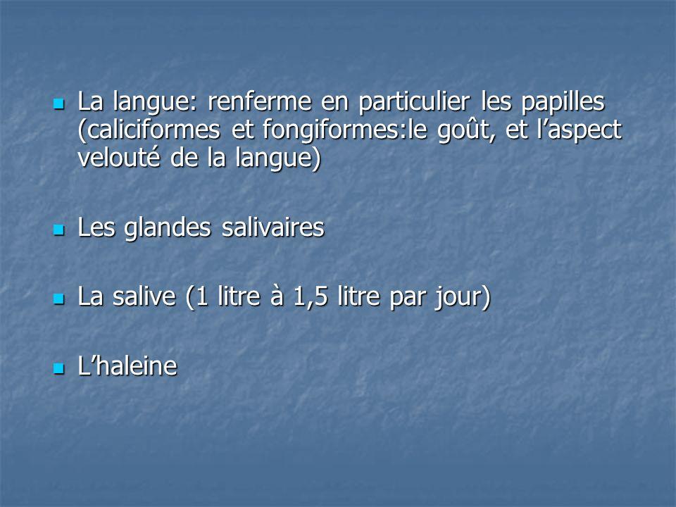 La langue: renferme en particulier les papilles (caliciformes et fongiformes:le goût, et l'aspect velouté de la langue)