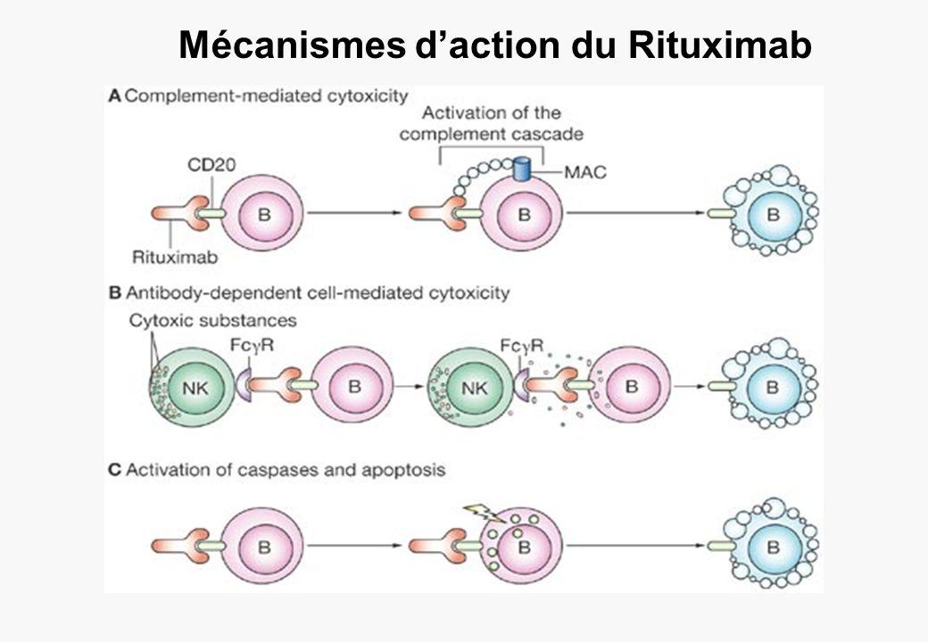 Mécanismes d'action du Rituximab