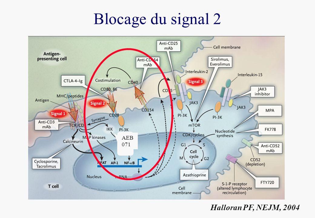 Blocage du signal 2 AEB 071 Halloran PF, NEJM, 2004