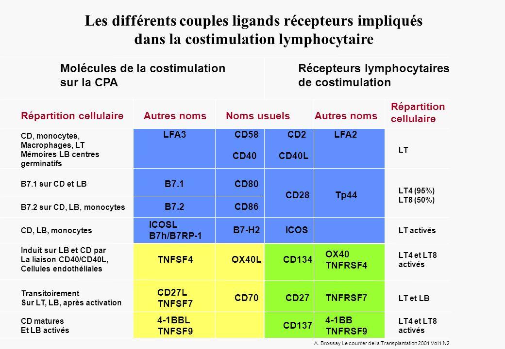 Les différents couples ligands récepteurs impliqués dans la costimulation lymphocytaire