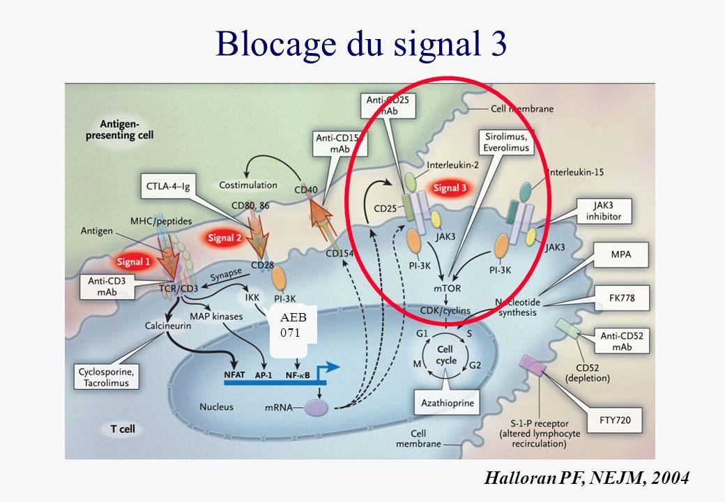Blocage du signal 3 AEB 071 Halloran PF, NEJM, 2004