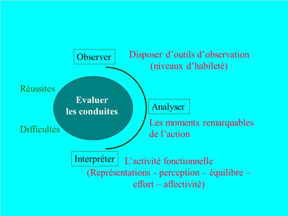 Disposer d'outils d'observation (niveaux d'habileté) Observer