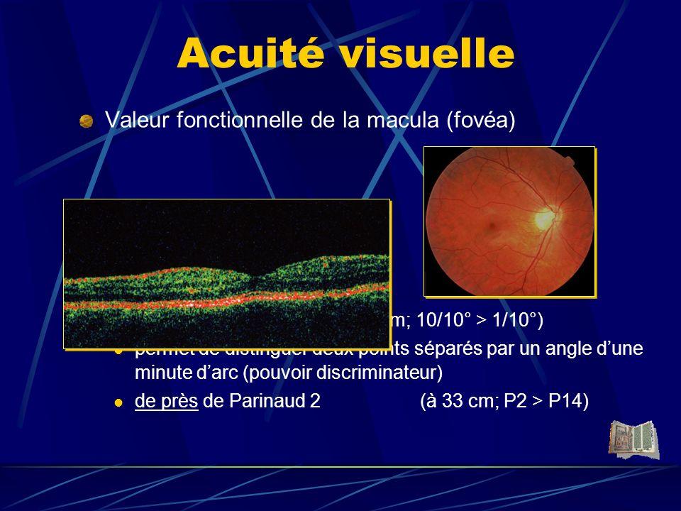 Acuité visuelle Valeur fonctionnelle de la macula (fovéa)