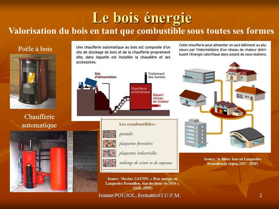 Le bois énergie Valorisation du bois en tant que combustible sous toutes ses formes. Poêle à bois.