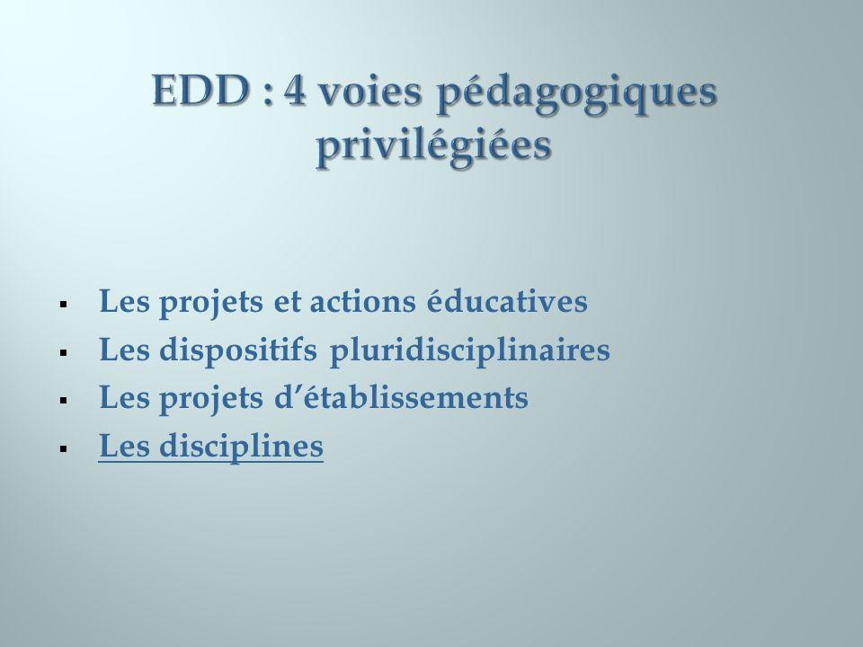 EDD : 4 voies pédagogiques privilégiées