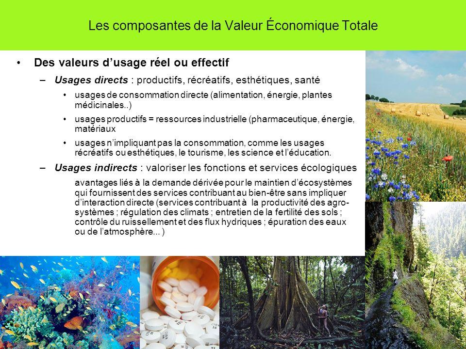 Les composantes de la Valeur Économique Totale