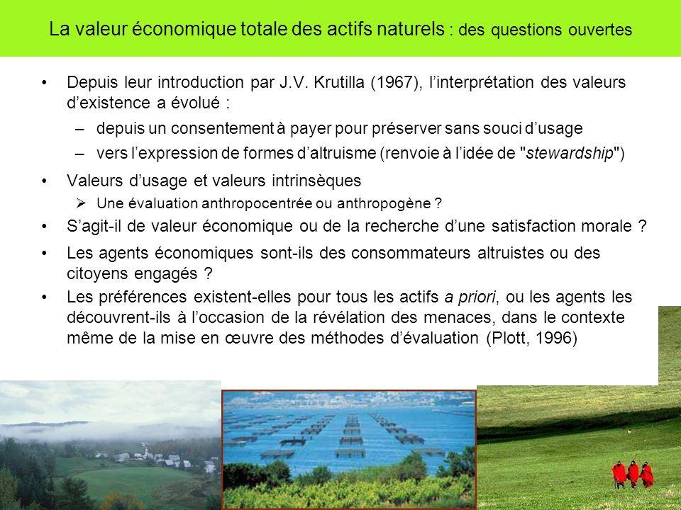 La valeur économique totale des actifs naturels : des questions ouvertes