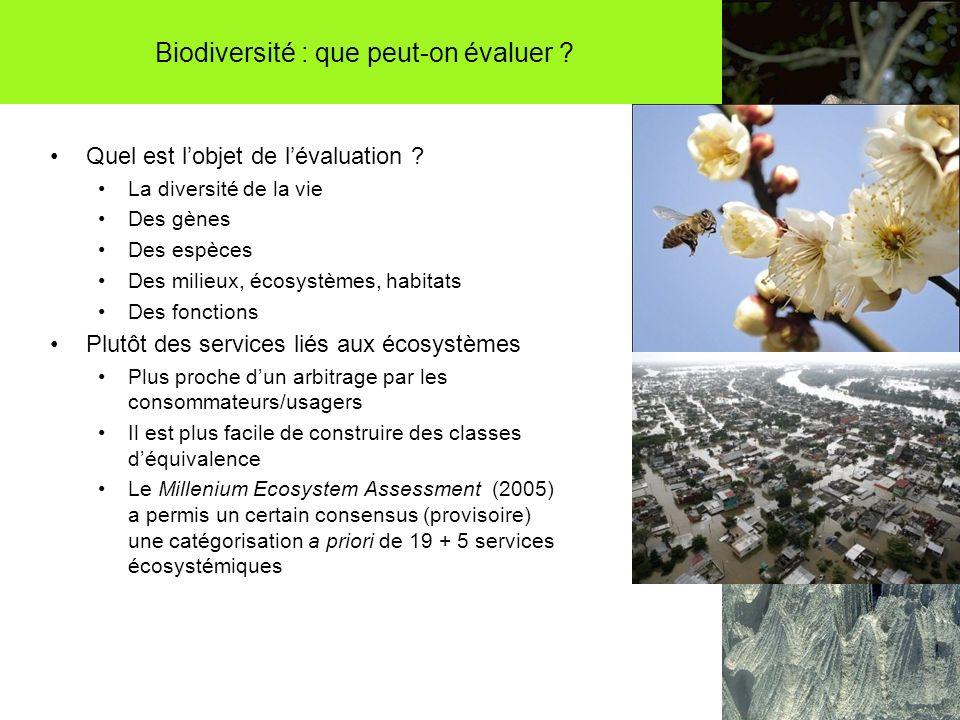 Biodiversité : que peut-on évaluer