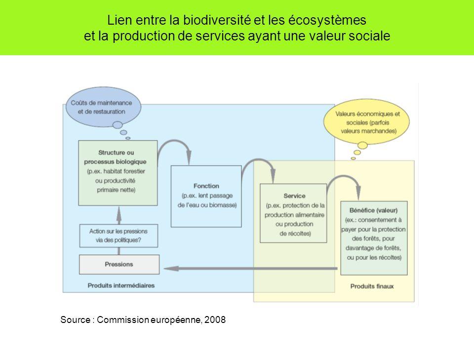 Lien entre la biodiversité et les écosystèmes et la production de services ayant une valeur sociale