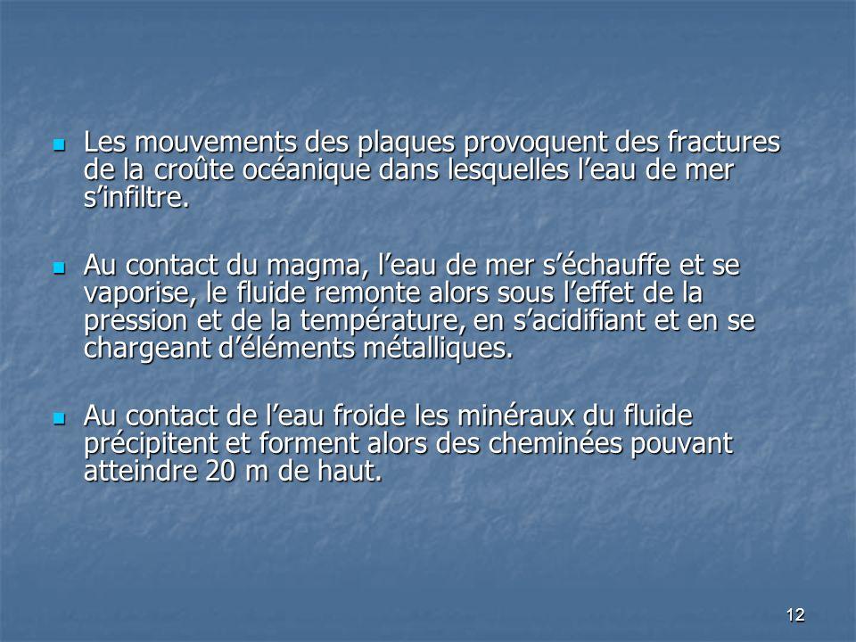 Les mouvements des plaques provoquent des fractures de la croûte océanique dans lesquelles l'eau de mer s'infiltre.